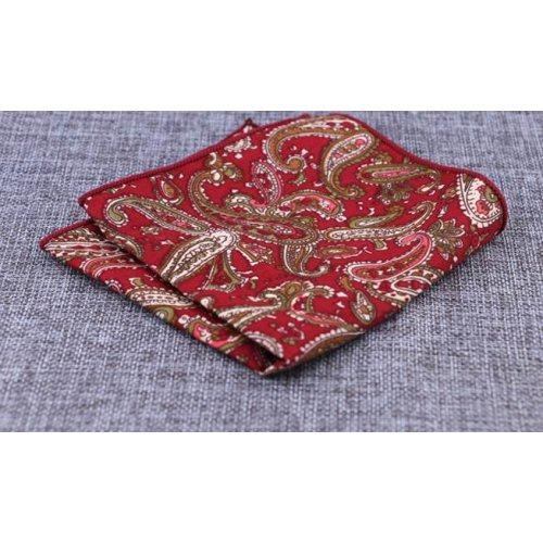 Cesare нагрудный платок PS35